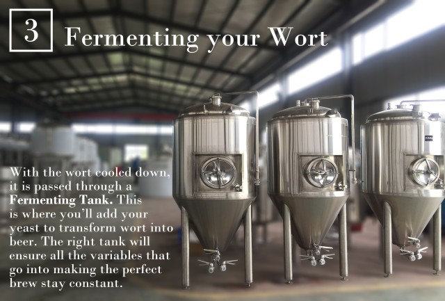 Step 3: Fermenting you wort