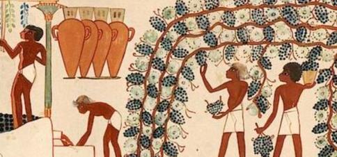 wine-lede_2.jpg